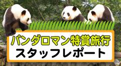 パンダロマン特賞旅行レポート
