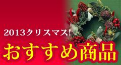 2013年クリスマス!! おすすめ商品